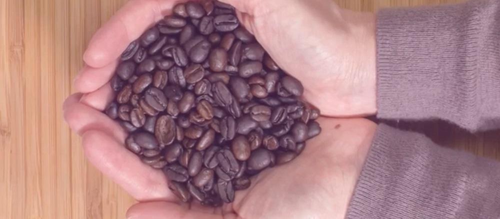 Plumbed Coffee Maker