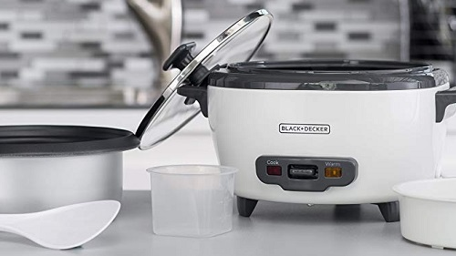 Best Rice Cooker for Brown/Sticky/Wild/Basmati Rice