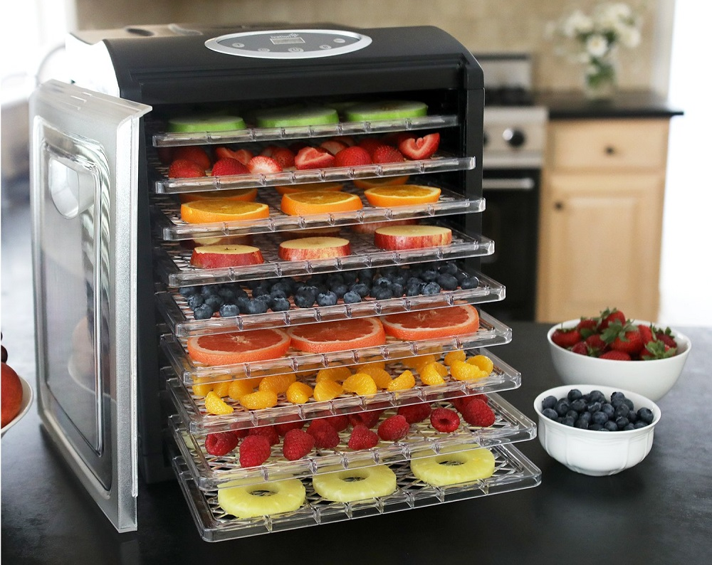 Best Electric Food Dehydrators for Nuts