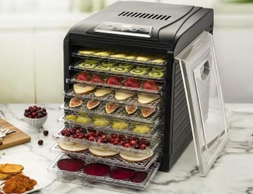 9 Best Electric Food Dehydrators for Mushrooms/Fruit/Nuts