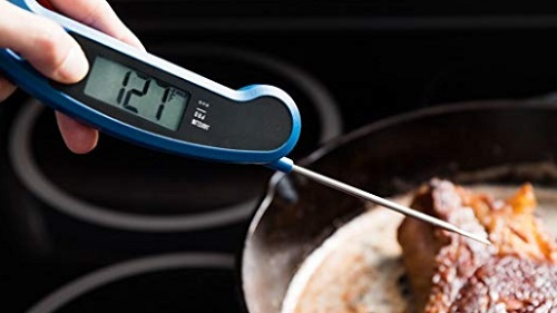 Best Meat Thermometers: Buying Guide